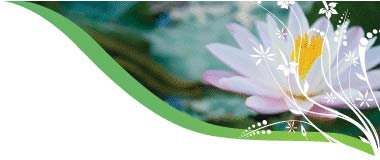 Naturopathy, Nutritional & Herbal Medicine, Counselling